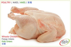 aves,01,whole chicken,frango inteiro