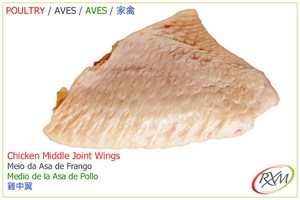 aves,07,middle joint wings, meio da asa
